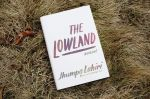 The Lowland in grass
